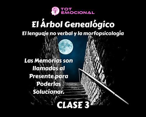 El Árbol Genealógico. El lenguaje no verbal y la morfopsicología. Curso Grabado Clase 3