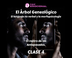 El Árbol Genealógico. El lenguaje no verbal y la morfopsicología. Curso Grabado Clase 4
