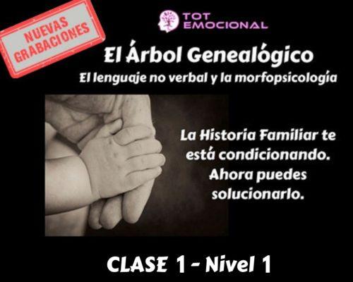 El Árbol Genealógico. El lenguaje no verbal y la morfopsicología. Curso Grabado Clase 1