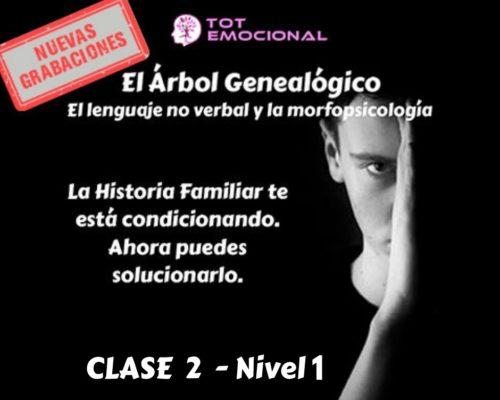 El Árbol Genealógico. El lenguaje no verbal y la morfopsicología. Curso Grabado Clase 2