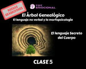 El Árbol Genealógico. El lenguaje no verbal y la morfopsicología. Curso Grabado Clase 5