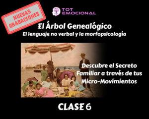 El Árbol Genealógico. El lenguaje no verbal y la morfopsicología. Curso Grabado Clase 6