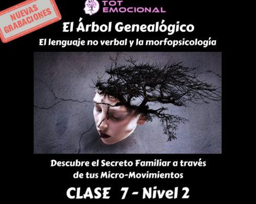 El Árbol Genealógico. El lenguaje no verbal y la morfopsicología. Curso Grabado Clase 7