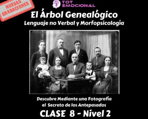 El Árbol Genealógico. El lenguaje no verbal y la morfopsicología. Curso Grabado Clase 8