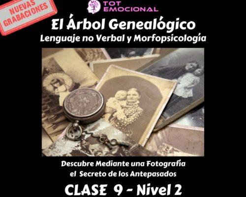 El Árbol Genealógico. El lenguaje no verbal y la morfopsicología. Curso Grabado Clase 9